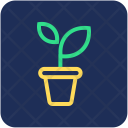 Plant Potted Pot Icon