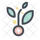 Plant Research Growth Icon