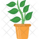 Plant Pot Container Icon