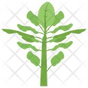 Plant Sprout Plantation Icon