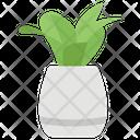 Pot Plant Vase Flower Pot Icon