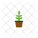 Plant Nature Flower Icon