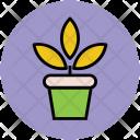Plant Pot Growing Icon