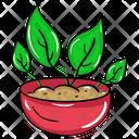 Plant Bowl Plantation Sprout Icon