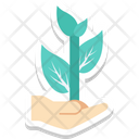 Plant Care Hand Gesture Fruit Icon