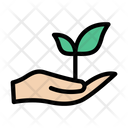 Plant Growth Care Icon