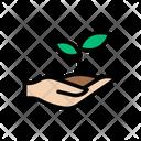 Plant Growth Garden Icon