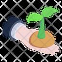 Growing Plant Seedling Ecology Icon