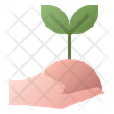 Hand Seeding Plant Icon