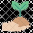 Plant Care Plant Hand Icon