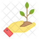 Plant Care Afforestation Ecology Care Icon