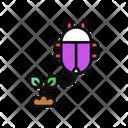 Plant Flea Icon