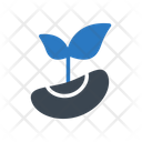 Seed Plant Agriculture Icon