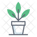 Plant Grow Plant Pot Potted Plant Icon