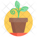 Potted Plant Flowering Plant Nature Icon