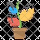 Plant Infographic Icon