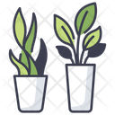 Plant Green Leaf Icon