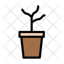 Plant Agriculture Farming Icon