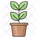 Plant Growth Green Icon