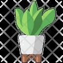 Plant Pot Gardening Leaves Icon