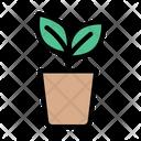 Plant Pot Plant Leaf Icon
