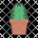 Plant Pot Plant Nature Icon