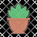 Plant Nature Green Icon