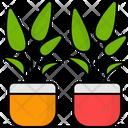 Plant Pot Succulent Flower Icon