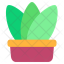 Plant Pot Pot House Plants Icon