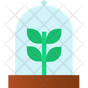 Plant Protection Growing Plant Plant Conservation Icon