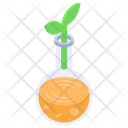 Botany Research Plant Research Plant Experiment Icon