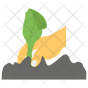 Plant Seeding Icon