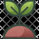 Plant Nature Sapling Icon