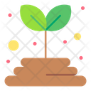 Plant Seeds Grow Land Icon