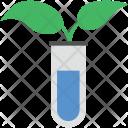 Plant Test Plantation Icon