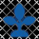 Leaf Flower Ecology Icon