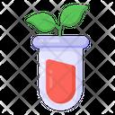 Culture Plant Plant Tube Plant Test Icon