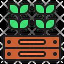 Plantation Spring Season Icon