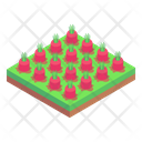Land Fields Cultivation Icon