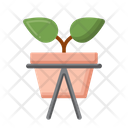 Planter Icon