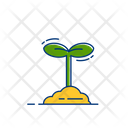 Plant Natural Nature Icon