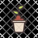 Planting Plant Gardening Icon