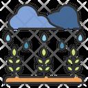Rain Plant Rain Plant Icon