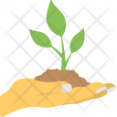 Agriculture Planting Growth Icon