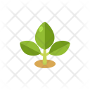 Planting Garden Greenery Icon