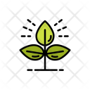 Planting Leaves Icon