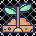 Planting Spring Plant Icon