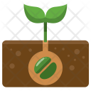 Planting Plant Growing Icon