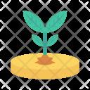 Planting Soil Plant Icon