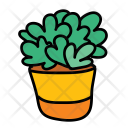 Indoor Plant Planting Icon